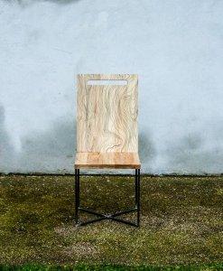 helga_carapace-design_02