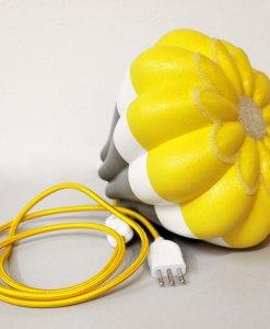 Astrophytum-giallo_Serena-Fanara_06