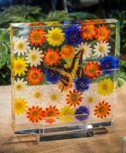 Plexiglass 18-16 b2_copy