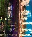 TIDshop_Antonio-Franchi_Central-Park-Manhattan_details_05