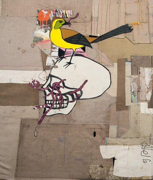 TIDshop_Gian-Pietro-Bombardelli_Ornitologia_01