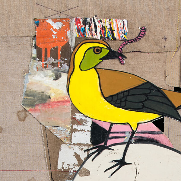 TIDshop_Gian-Pietro-Bombardelli_Ornitologia_details_02