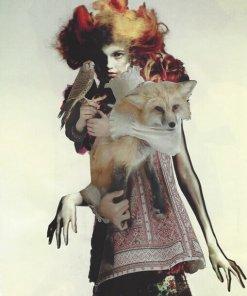 Il falco, La volpe, La strega (Studio di Figura)
