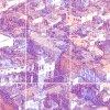 TIDshop_Massimo-Corona_Venezia-m-164_details_03